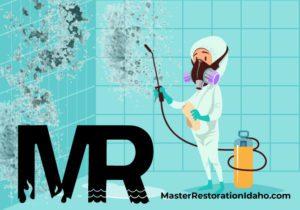 Mold Remediation Company Boise Cartoon mold remediator removing mold on bathroom wall