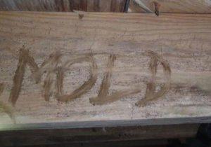 Mold in Boise Idaho Crawl Spaces