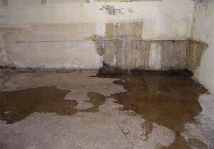 Basement water damage in a Boise Idaho home