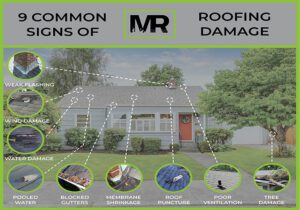 Roofing damage infographic showing all different types of home roof damage signs